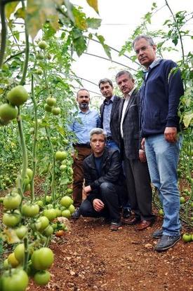 """Alata Bahçe Kültürleri Araştırma İstasyonu Müdürlüğü Öncülüğünde 9 Kuruluşun Da Destekleriyle Hazırlanan """"güvenli Gıda Projesi"""" Mersin'in Erdemli İlçesinde Hayat Buldu."""