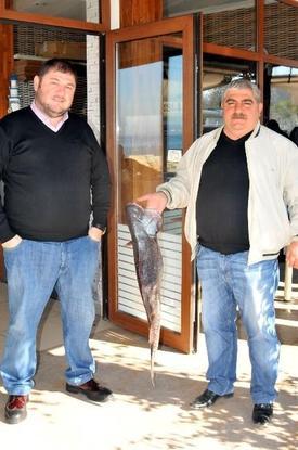 Yalovalı Balıkçılar Tarafından Marmara Denizi'nde 11.5 Kilogramlık Minekop Balığı Yakalandı.