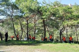 """Mersin'in Silifke İlçesindeki Açık Cezaevinde Yatan 48 Mahkum Çamlık Alanında """"temiz Silifke"""" Parolasıyla Temizlik Çalışması Yaptı."""