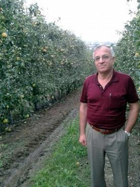 """Sammey Yönetim Kurulu Başkanı Ahmet Kasap, """"çiftliğimizde 2014 Yılında Hedeflenen Hasat 2 Bin Tondu. Ancak Mevsimsel Değişikliklerden Dolayı Hedef Şu Anda Bin 750 Tona Ulaşabildiı"""" Dedi."""