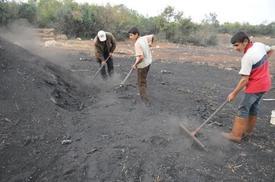 Pikniklerin Vazgeçilmezi Mangal Kömürü Mangalları Isıntıncaya Kadar Bir Çok Aşamalardan Geçiyor.