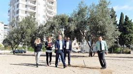 Manisa'nın Soma İlçesi Yırca Köyünde Termik Santral İçin Zeytin Ağaçları Kesilen Köylülerin Mücadele Anısı, Antalya'nın Muratpaşa Belediyesi'nin Yaptıracağı Parkta Yaşayacak.